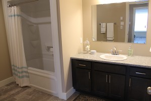 villageviewsuites (6)